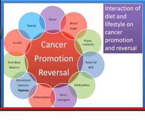 CANCER_PREVENTION___REVERSAL-_Video__-3